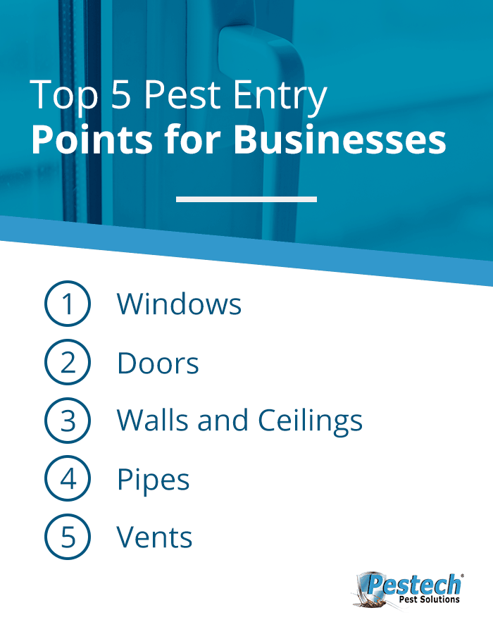 Top Entry Points For Commercial Pests