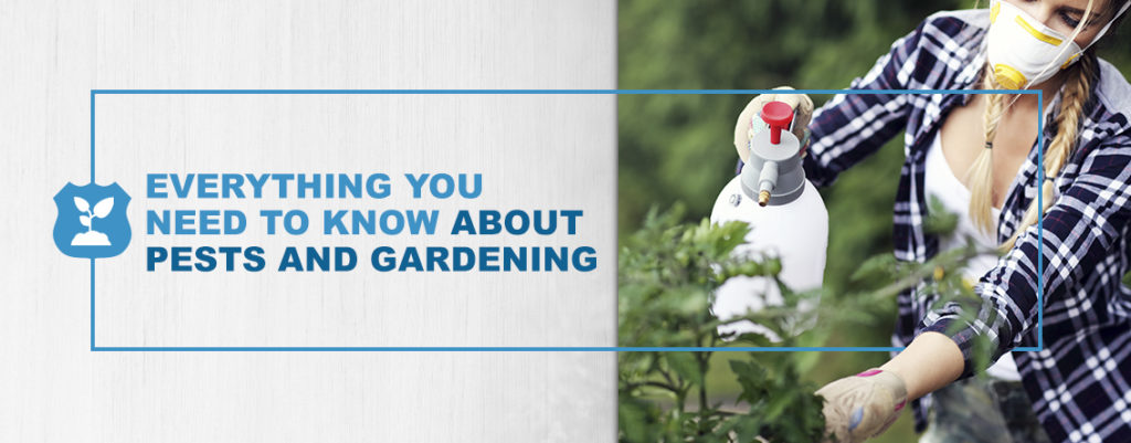 Everything You Need to Know About Pests and Gardening