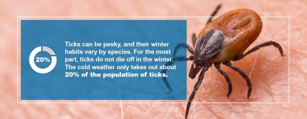 Tics Activity in Winter