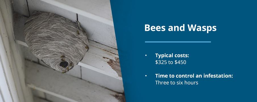 Bees and Wasp Pest Costs