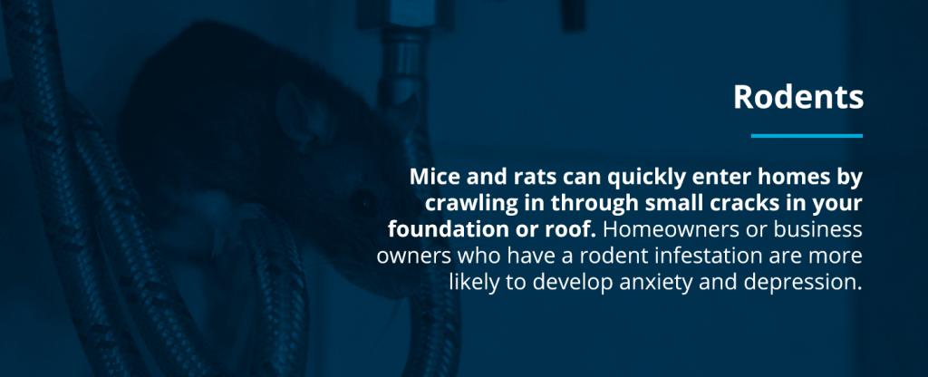 Emotional Damage of Pests: Rodents