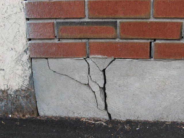 Foundation Crack Entry Point for Pests