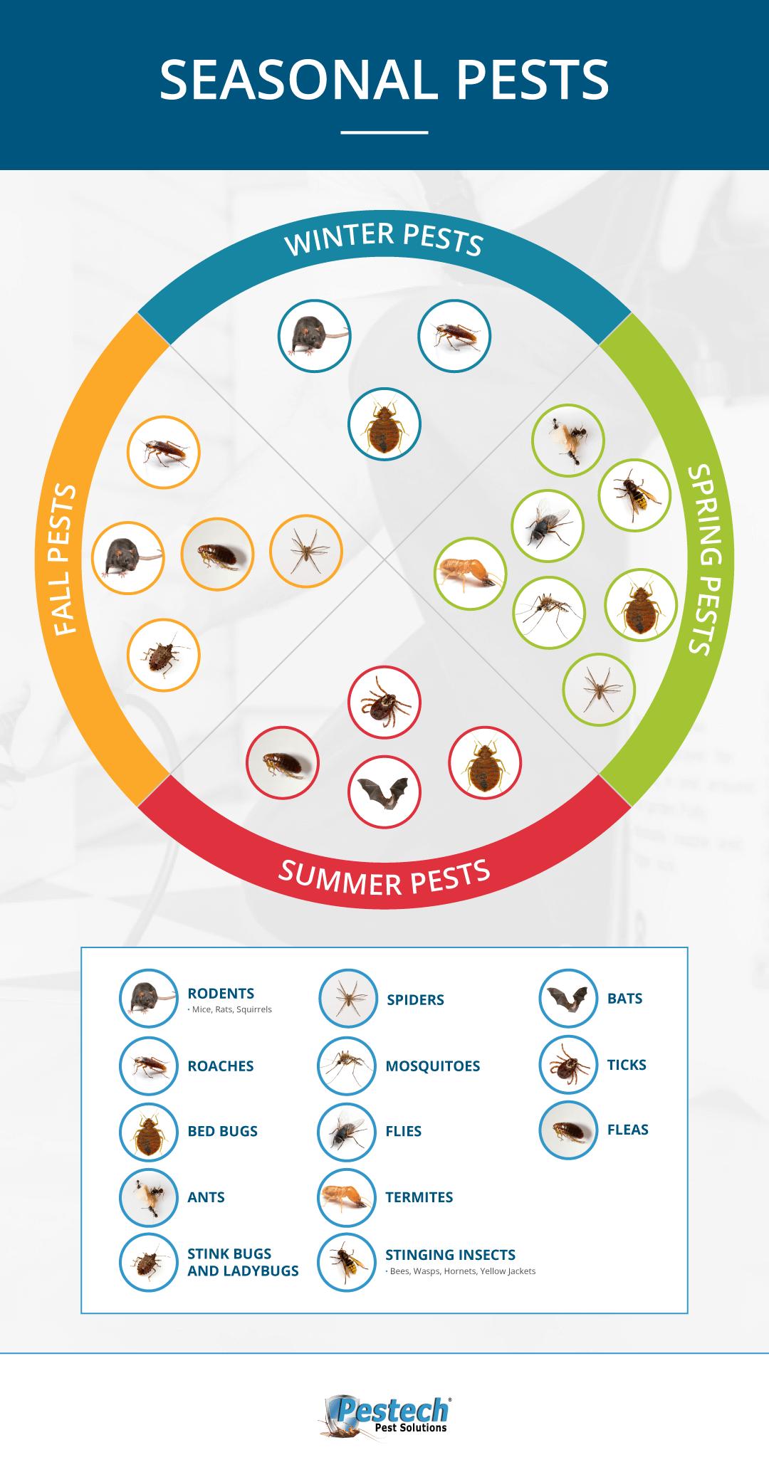 Pests in Each Season